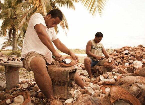 Extraction de l'amande de la noix de coco aux Tuamotu © B.Thouard