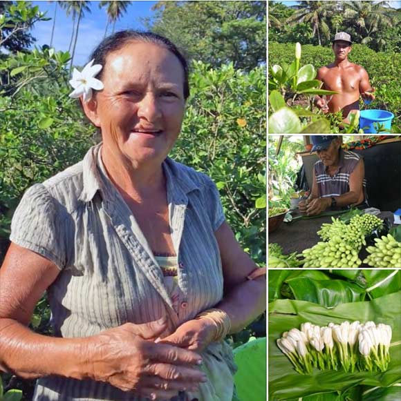 Juliette et les membres de sa famille ont tout mis en oeuvre pour vous offrir ces fleurs fraîches de Tiare Tahiti. Mauru'uru !