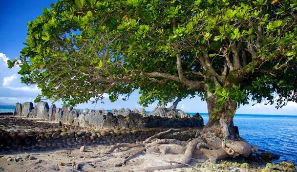 Tamanu Tahiti sur le Marae Taputapuatea Raiatea © Expedia