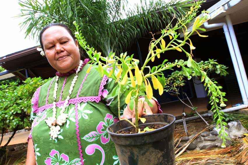 Christiane vous présente la plante qu'elle a rapportée de Arutua aux Tuamotu pour la confection de son Monoi Hora Ora