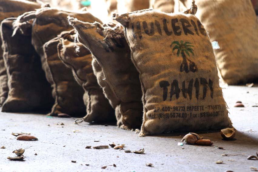 Seul le coprah des sols coralliens, venu principalement des Tuamotu, est utilisé pour ce qui deviendra l'huile du Monoï de Tahiti.