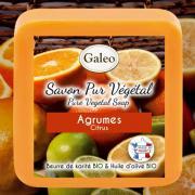 CADEAU SAVON PUR VEGETAL GALEO AGRUMES 100G