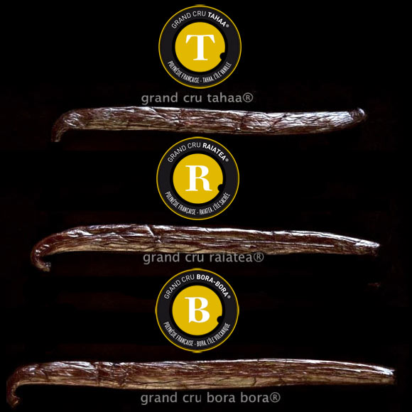 Les Grands Crus Tahiti Vanille se différencient par la taille de la gousse. Mais chaque Grand Cru offre les arômes subtils différents selon les spécialistes culinaires : chaque gousse en effet est une pépite de saveurs et de senteurs exceptionnelles...