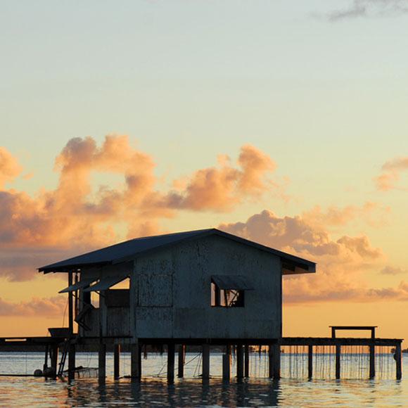 Perle certifiée en provenance d'une ferme perlière des Tuamotu Gambier, comme celle-ci, typique des atolls de Polynésie.