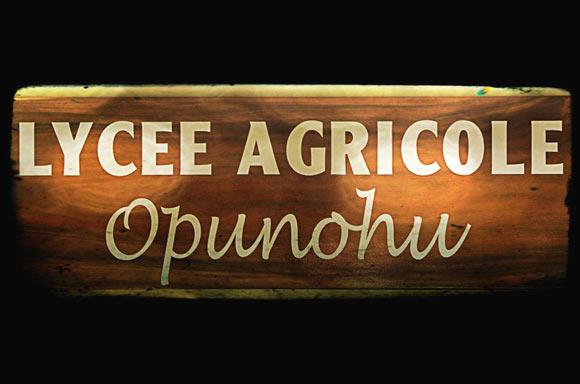 L'exploitation agricole est installée sur une trentaine d'hectares dans la vallée d'Opunohu et son activité se répartit entre 2 secteurs : la production agricole, cultures de fleurs, de légumes, et bien sûr production fruitière, sur plus de 15 ha.