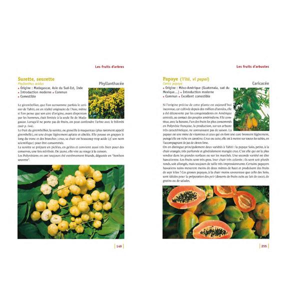 GUIDE DES FRUITS DE TAHITI ET SES ÎLES NOUVELLE EDITION