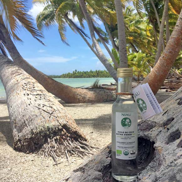 L'Huile de Coco Extra Vierge Bio Niau au milieu de sa cocoteraie à Niau, petit atoll des Tuamotu Crédit photo ©NiauOrganic