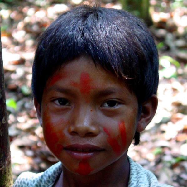 A l'origine, les Indiens d'Amazonie l'utilisent pour se protéger du soleil et des moustiques en l'appliquant directement sur la peau, d'où l'appellation de « peaux rouges ».