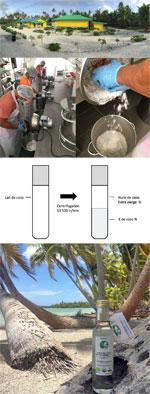 huile de coco extra vierge niau